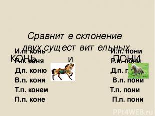 Сравните склонение двух существительных КОНЬ и ПОНИ И.п. конь И.п. пони Р.п. кон