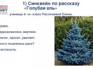 1) Синквейн по рассказу «Голубая ель» Синквейн ученицы 6 «а» класс Растегаевой Е