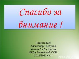 Спасибо за внимание ! Подготовил: Александр Требухов Ученик 6 «Б» класса МКОУ Ма