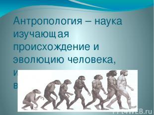 Антропология – наука изучающая происхождение и эволюцию человека, изменение его