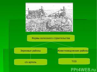 Формы колхозного строительства Зерновые районы Животноводческие районы с/х артел