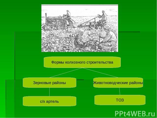 Формы колхозного строительства Зерновые районы Животноводческие районы с/х артель ТОЗ