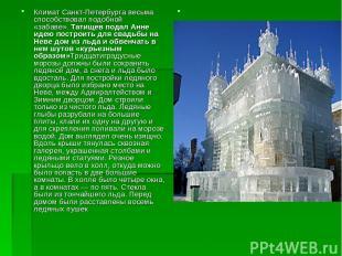 Климат Санкт-Петербурга весьма способствовал подобной «забаве».Татищев подал Ан