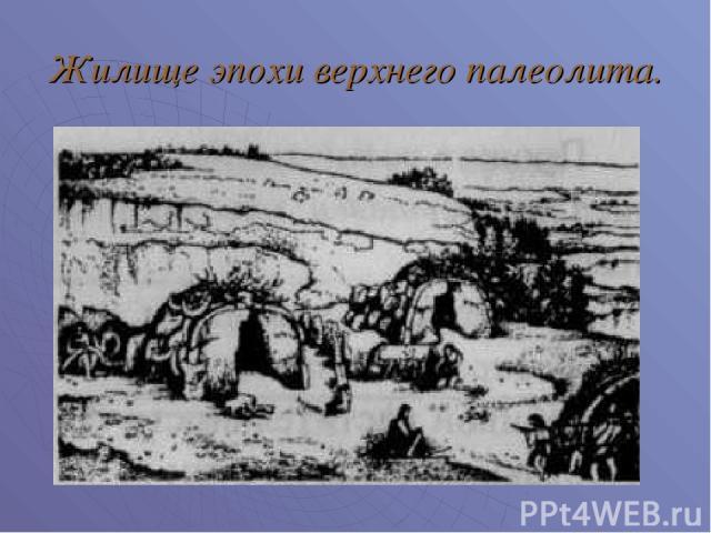 Жилище эпохи верхнего палеолита.