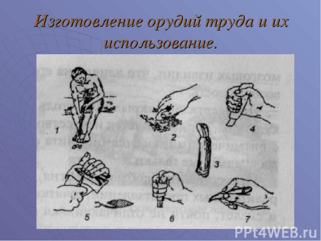 Изготовление орудий труда и их использование.
