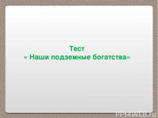 Тест « Наши подземные богатства»