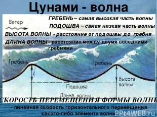 Цунами - волна ГРЕБЕНЬ – самая высокая часть волны ПОДОШВА – самая низкая часть