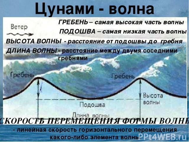 Цунами - волна ГРЕБЕНЬ – самая высокая часть волны ПОДОШВА – самая низкая часть волны ВЫСОТА ВОЛНЫ - расстояние от подошвы до гребня ДЛИНА ВОЛНЫ - расстояние между двумя соседними гребнями СКОРОСТЬ ПЕРЕМЕЩЕНИЯ ФОРМЫ ВОЛНЫ - линейная скорость горизон…
