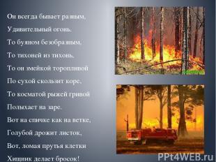Он всегда бывает разным, Удивительный огонь. То буяном безобразным, То тихоней и