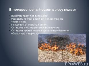 В пожароопасный сезон в лесу нельзя: Выжигать траву под деревьями; Разводить кос