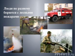 Люди по разному борются с лесными пожарами