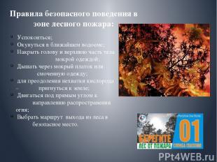 Правила безопасного поведения в зоне лесного пожара: Успокоиться; Окунуться в бл
