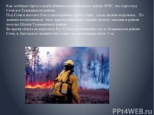 Как сообщает пресс-служба Южного регионального центра МЧС, лес горел под Сочи и