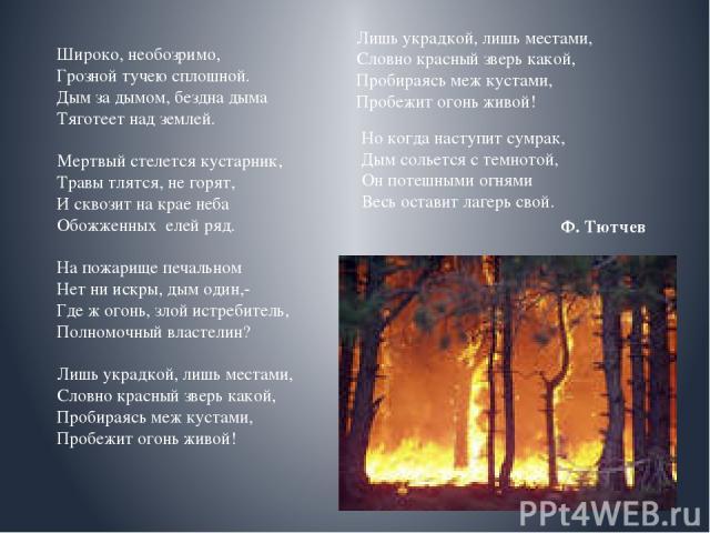 Широко, необозримо, Грозной тучею сплошной. Дым за дымом, бездна дыма Тяготеет над землей. Мертвый стелется кустарник, Травы тлятся, не горят, И сквозит на крае неба Обожженных елей ряд. На пожарище печальном Нет ни искры, дым один,- Где ж огонь, зл…