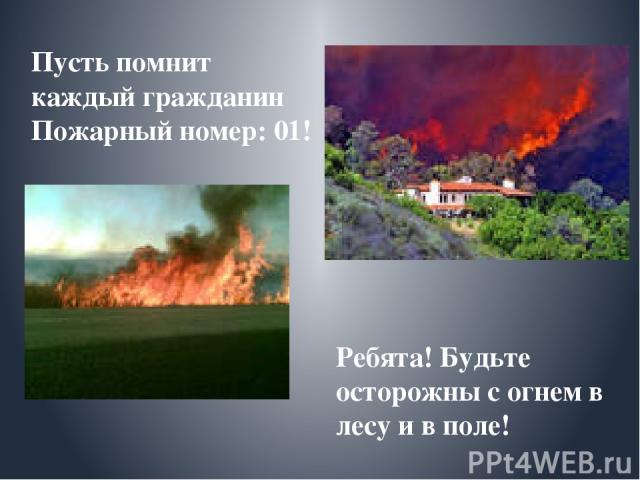 Пусть помнит каждый гражданин Пожарный номер: 01! Ребята! Будьте осторожны с огнем в лесу и в поле!