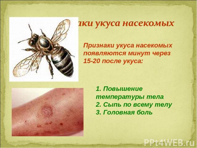 Признаки укуса насекомых появляются минут через 15-20 после укуса: 1. Повышение температуры тела 2. Сыпь по всему телу 3. Головная боль