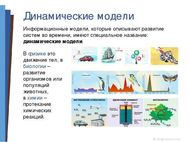 Динамические модели Информационные модели, которые описывают развитие систем во времени, имеют специальное название: динамические модели. В физике это движение тел, в биологии – развитие организмов или популяций животных, в химии – протекание химиче…