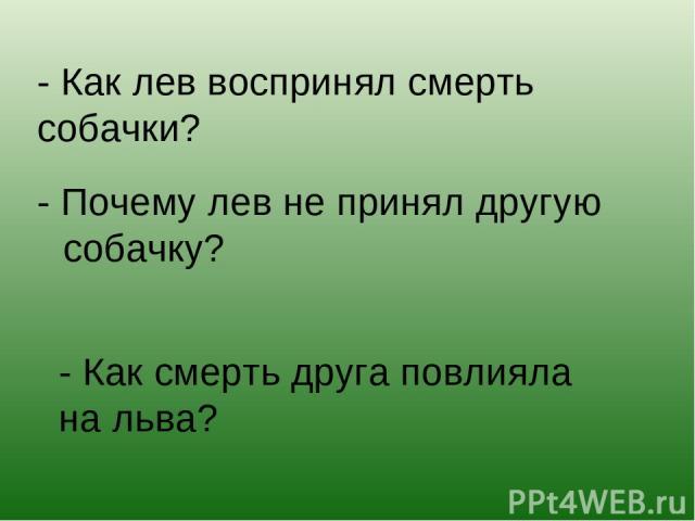 - Как лев воспринял смерть собачки? - Почему лев не принял другую собачку? - Как смерть друга повлияла на льва?