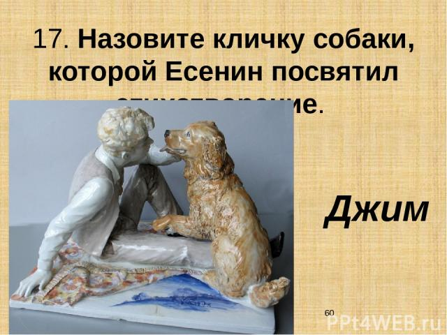 17. Назовите кличку собаки, которой Есенин посвятил стихотворение. Джим