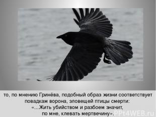 то, по мнению Гринёва, подобный образ жизни соответствует повадкам ворона, злове