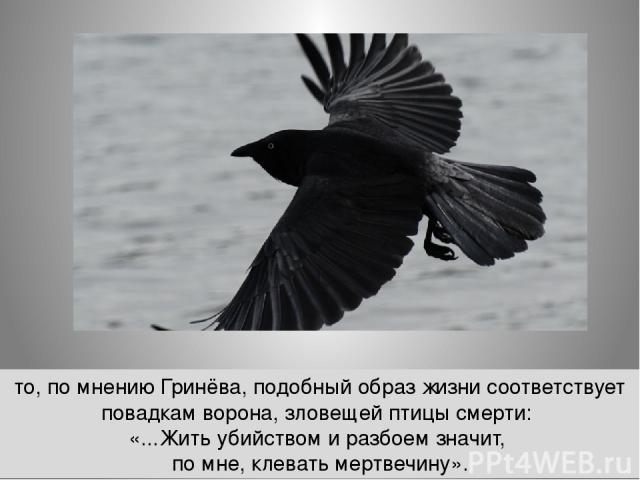то, по мнению Гринёва, подобный образ жизни соответствует повадкам ворона, зловещей птицы смерти: «...Жить убийством и разбоем значит, по мне, клевать мертвечину».