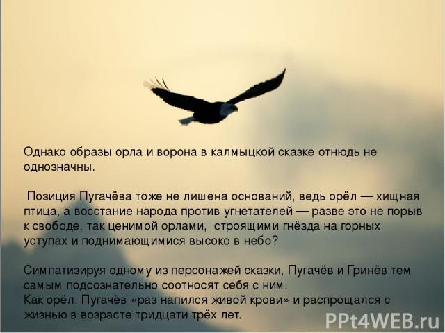 Однако образы орла и ворона в калмыцкой сказке отнюдь не однозначны. Позиция Пугачёва тоже не лишена оснований, ведь орёл — хищная птица, а восстание народа против угнетателей — разве это не порыв к свободе, так ценимой орлами, строящими гнёзда на г…