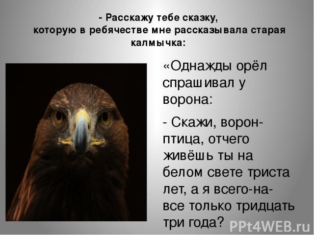 «Однажды орёл спрашивал у ворона: - Скажи, ворон-птица, отчего живёшь ты на белом свете триста лет, а я всего-на-все только тридцать три года? - Расскажу тебе сказку, которую в ребячестве мне рассказывала старая калмычка: