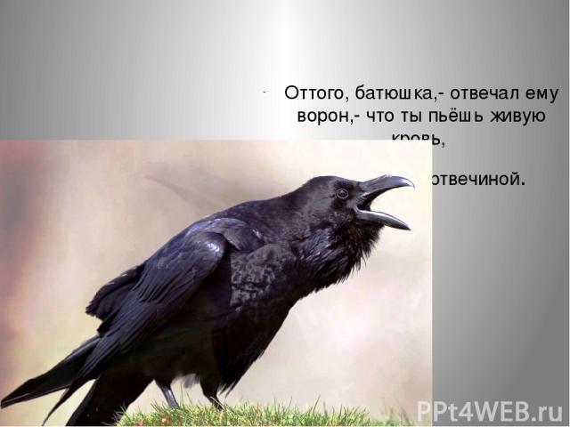 Оттого, батюшка,- отвечал ему ворон,- что ты пьёшь живую кровь, а я питаюсь мертвечиной.