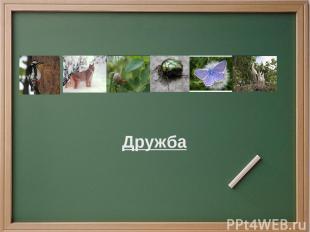 Проверка Дерево, дрозд, друг, дивный, дергать, дневник, длинный, диван, дыра, до