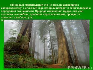 Природа в произведении это не фон, не декорация к изображаемому, а сложный мир,