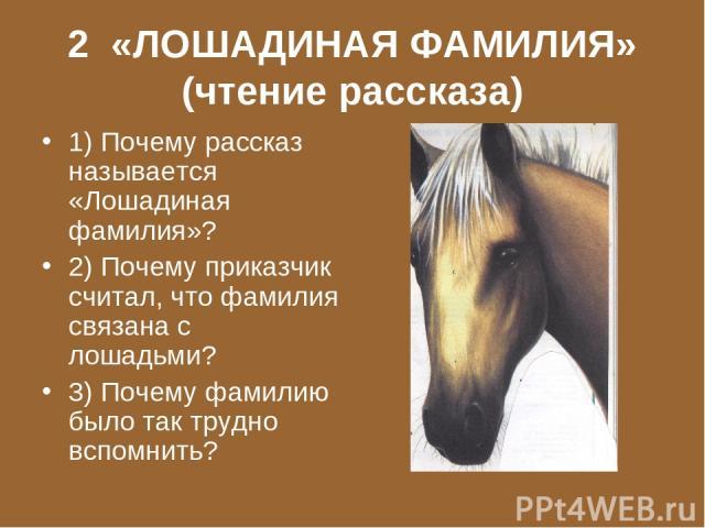 2 «ЛОШАДИНАЯ ФАМИЛИЯ» (чтение рассказа) 1) Почему рассказ называется «Лошадиная фамилия»? 2) Почему приказчик считал, что фамилия связана с лошадьми? 3) Почему фамилию было так трудно вспомнить?