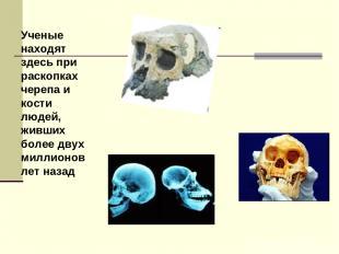 Ученые находят здесь при раскопках черепа и кости людей, живших более двух милли