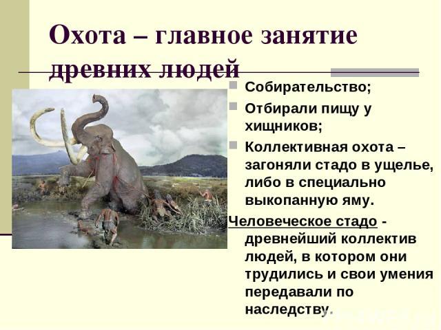 Охота – главное занятие древних людей Собирательство; Отбирали пищу у хищников; Коллективная охота – загоняли стадо в ущелье, либо в специально выкопанную яму. Человеческое стадо - древнейший коллектив людей, в котором они трудились и свои умения пе…