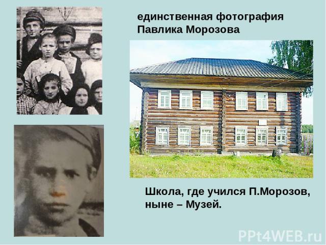 единственная фотография Павлика Морозова Школа, где учился П.Морозов, ныне – Музей.