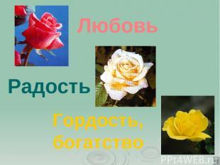 Любовь Радость Гордость, богатство