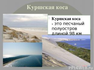 Куршская коса Куршская коса -это песчаный полуостров длиной 98 км (российская ч