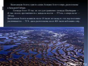 Васюганские болота одни изсамых больших болот вмире, расположены вЗападной Си