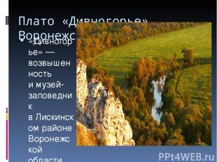 Плато «Дивногорье», Воронежская область «Дивногорье»— возвышенность имузей-зап