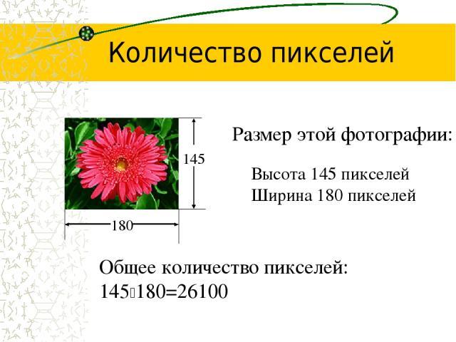 Размер этой фотографии: Высота 145 пикселей Ширина 180 пикселей 180 145 Общее количество пикселей: 145 180=26100 Количество пикселей