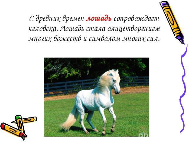 С древних времен лошадь сопровождает человека. Лошадь стала олицетворением многих божеств и символом многих сил.