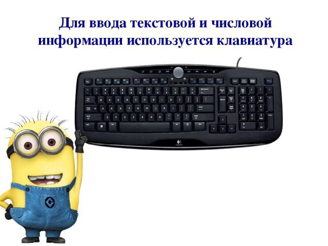 Для ввода текстовой и числовой информации используется клавиатура