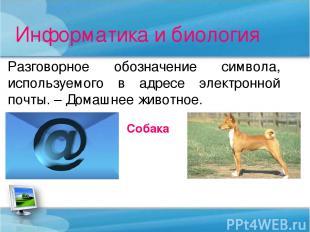 Информатика и биология Разговорное обозначение символа, используемого в адресе э