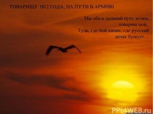 ТОВАРИЩУ 1812 ГОДА, НА ПУТИ В АРМИЮ Мы оба в дальний путь летим, товарищ мой, Ту