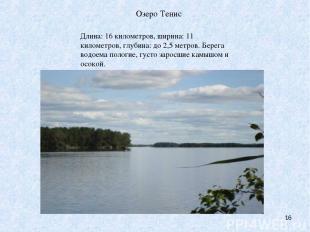 Озеро Тенис * Длина: 16 километров, ширина: 11 километров, глубина: до 2,5 метро