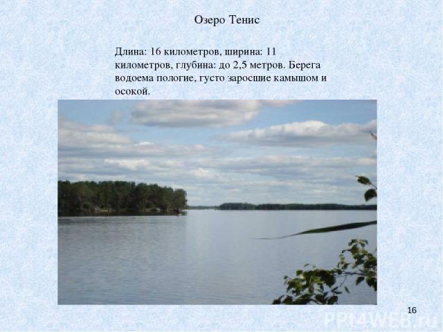 Озеро Тенис * Длина: 16 километров, ширина: 11 километров, глубина: до 2,5 метров. Берега водоема пологие, густо заросшие камышом и осокой. Озеро Тенис