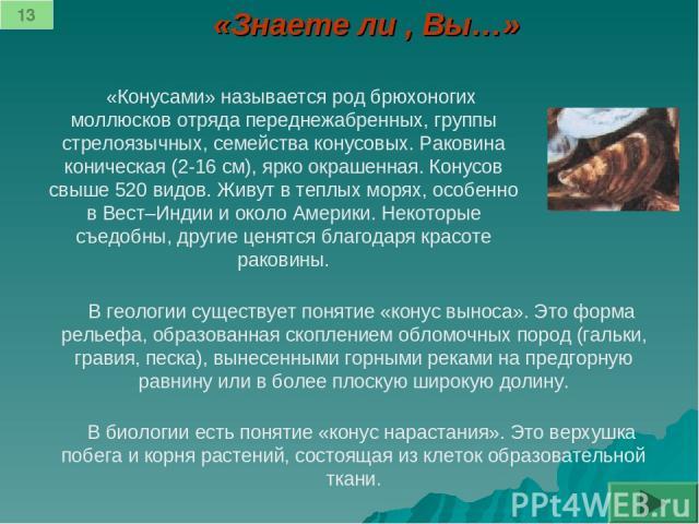 «Знаете ли , Вы…» «Конусами» называется род брюхоногих моллюсков отряда переднежабренных, группы стрелоязычных, семейства конусовых. Раковина коническая (2-16 см), ярко окрашенная. Конусов свыше 520 видов. Живут в теплых морях, особенно в Вест–Индии…