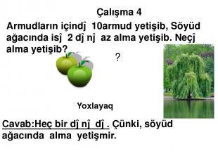Çalışma 4 Armudların içində 10armud yetişib, Söyüd ağacında isə 2 dənə az alma y