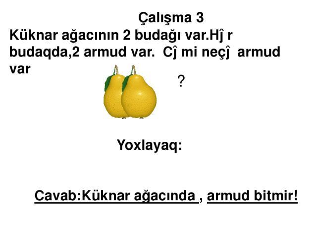 Çalışma 3 Küknar ağacının 2 budağı var.Hər budaqda,2 armud var. Cəmi neçə armud var ? Yoxlayaq: Cavab:Küknar ağacında , armud bitmir!