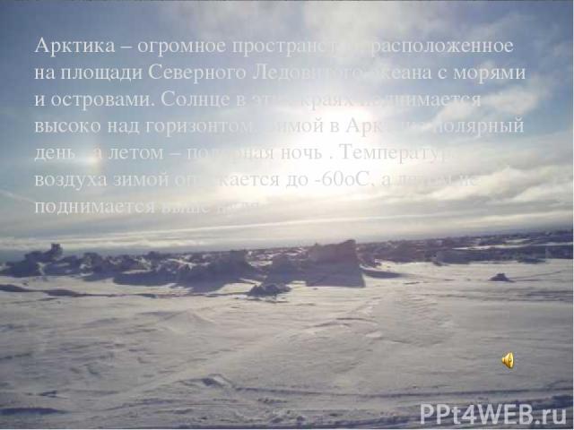 Арктика – огромное пространство, расположенное на площади Северного Ледовитого океана с морями и островами. Солнце в этих краях поднимается высоко над горизонтом. Зимой в Арктике полярный день , а летом – полярная ночь . Температура воздуха зимой оп…