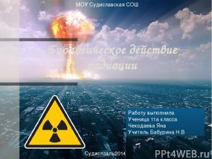 Биологическое действие радиации Работу выполнила Ученица 11а класса Чекодаева Ян